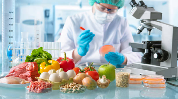 Food quality control concept Food quality control expert inspecting specimens of groceries in the laboratory genetic modification stock pictures, royalty-free photos & images