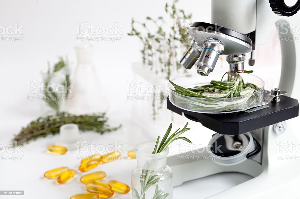 Food quality control in the laboratory rosemary photo libre de droits
