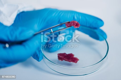 istock Food safety, analyzing sample of red meat in laboratory 874833280