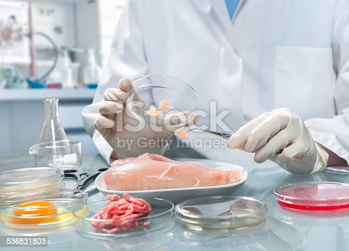 istock Food safety concept 536831803