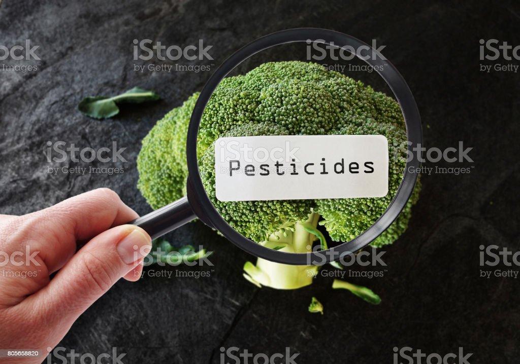 Conceito de segurança de alimentos - foto de acervo