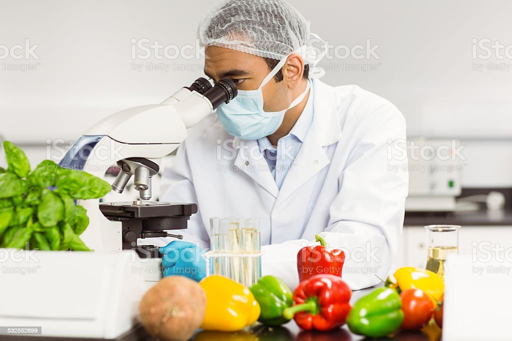 Food scientist using the microscope stock photo