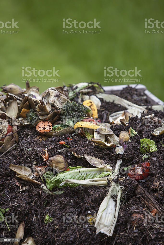food scraps on top of compost pile copy space stock photo