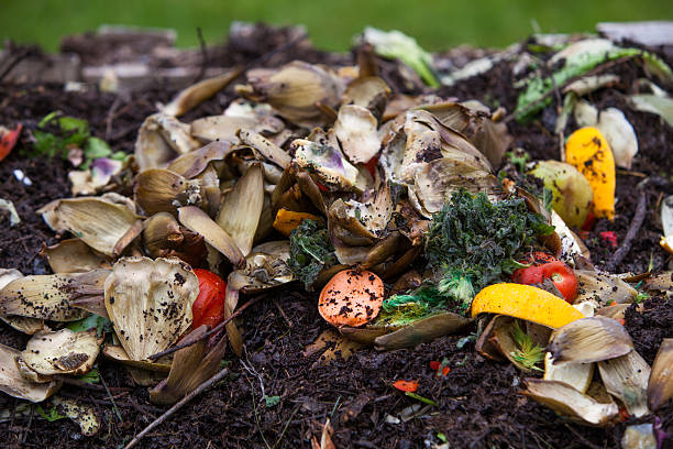 food scraps on top of compost pile horizontal stock photo