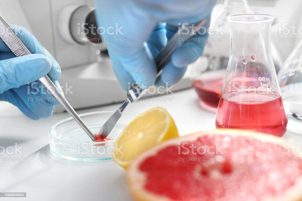 The lab technician prepares a sample for microscopic examination.