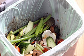 A food bin container full of veg and fruit domestic waste, ready to go to the recycling centre