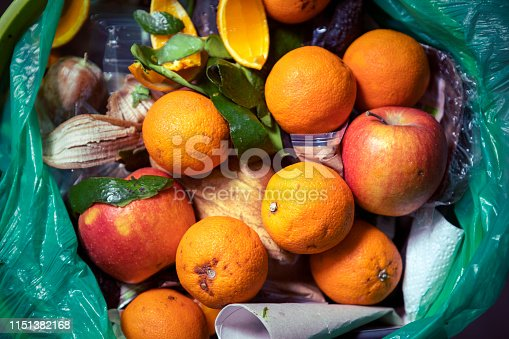 Remains of half rotten food and another rubbish in waste basket. Putrid fruit. Oranges and apples. Consumerism.