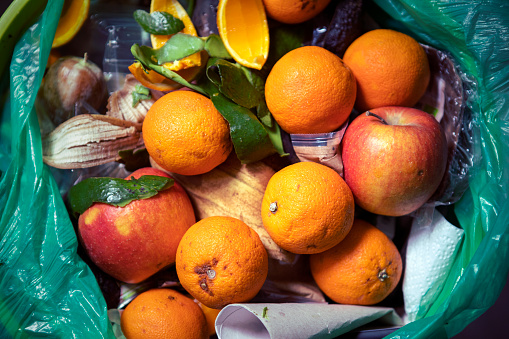 Remains of half rotten food and another rubbish in waste basket.\nPutrid fruit. Oranges and apples. Consumerism.