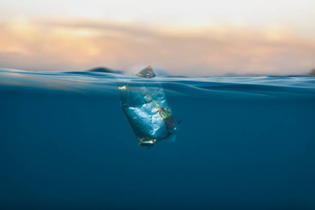 Food wrapper rubbish in the ocean stock photo