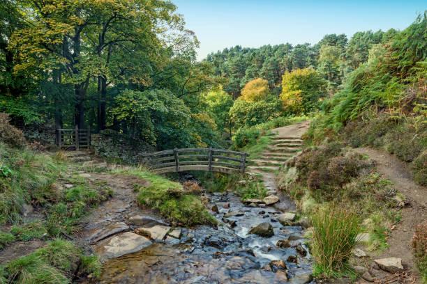 foorbridge over stream in the peak disrtrict - yorkshire meridionale foto e immagini stock