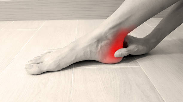 Foot anatomy with red highlight on painful area.  Ankle pain may cause from muscle strain, Achilles tendinitis, ligament sprain, arthritis, bone fracture or bursitis disease. Medical symptom concept stock photo