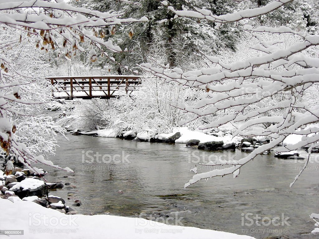 foot bridge in the snow royalty free stockfoto