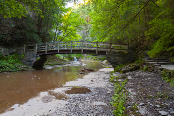 Foot Bridge A foot bridge allows hikers to climb a steep trail in the gorge wall.  Summer within the gorge of Buttermilk Falls Park. michael stephen wills waterfall stock pictures, royalty-free photos & images