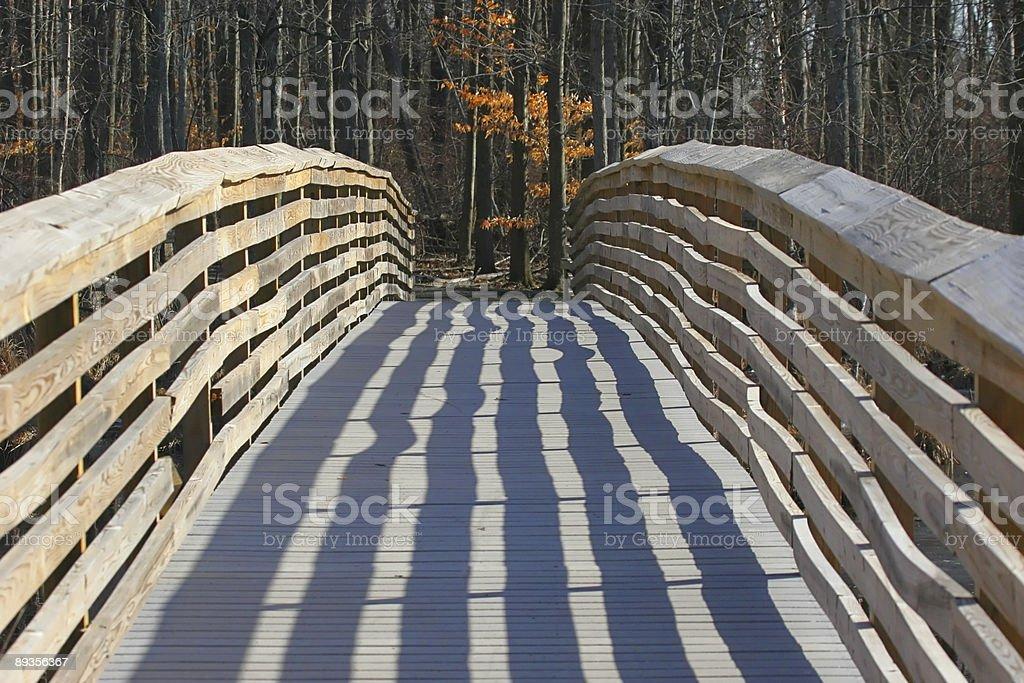 Foot Bridge royalty free stockfoto