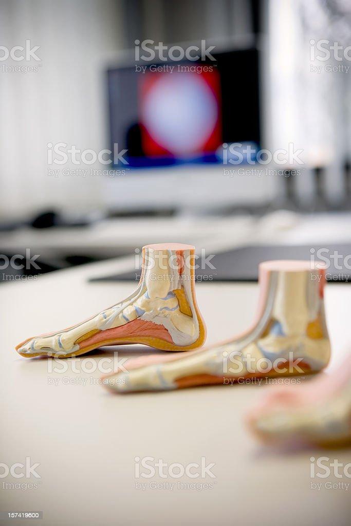 Foot medical center stock photo