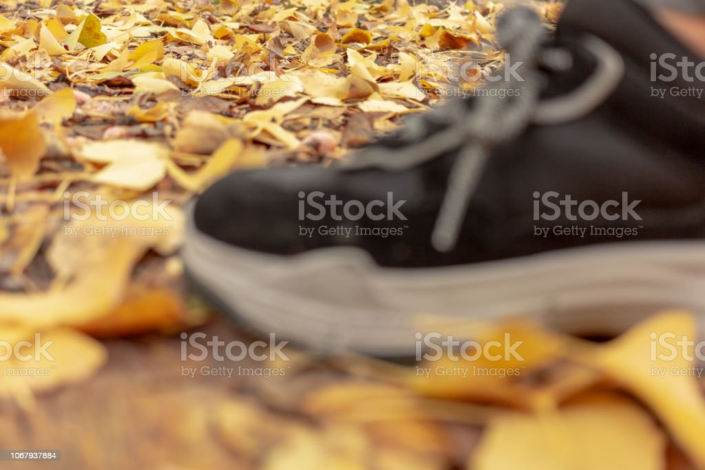 Foot Moving Forward in the Leaves - foto stock