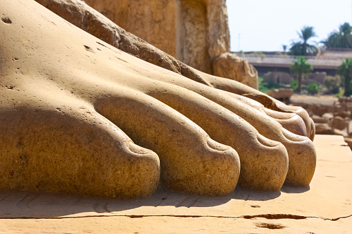 Foot of a Statue Temple of Karnak Luxor Egypt