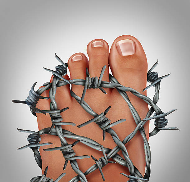 Foot Pain Foot pain podiatry medical concept as a symbol for painful inflammation or toe injury as a group of sharp barb wire wrapped around the human feet anatomy. gout stock pictures, royalty-free photos & images