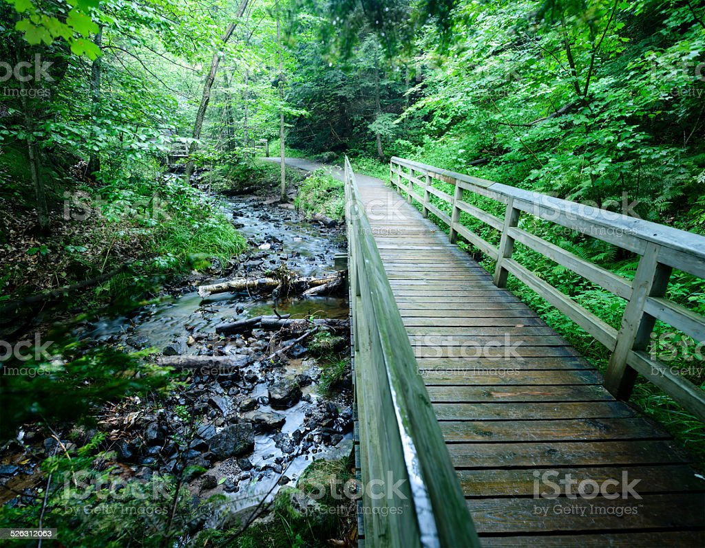 Foot Path and Stream stock photo