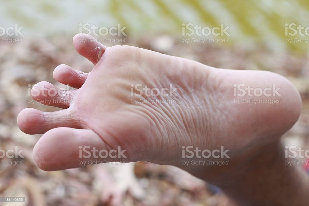 foot stock photo