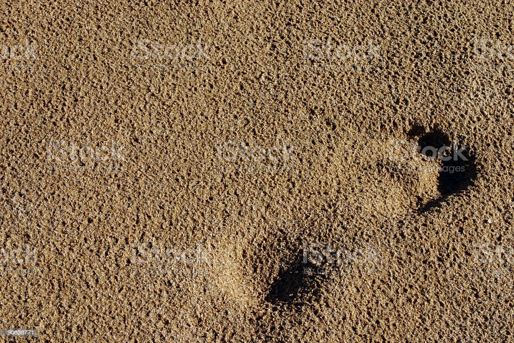foot print in the beach royalty-free stock photo