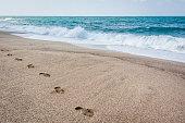 Shoe prints on the beach of Black sea in Turkey