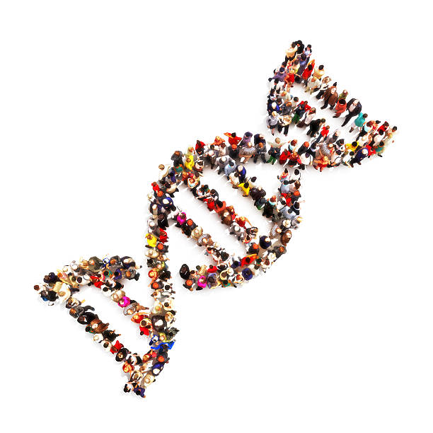DNA piede stampa. - foto stock