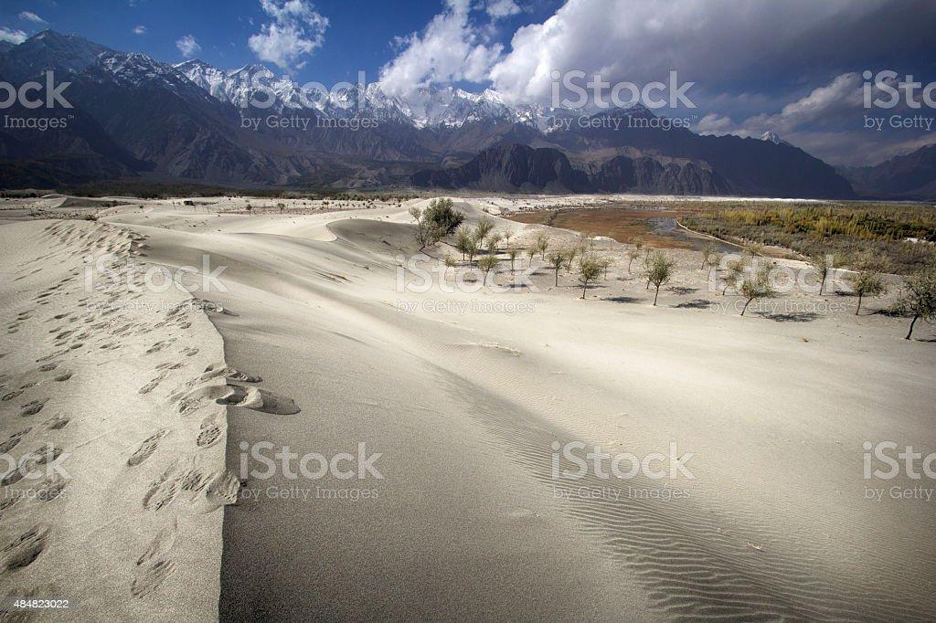Foot Prints & Dunes - Stock Image stock photo