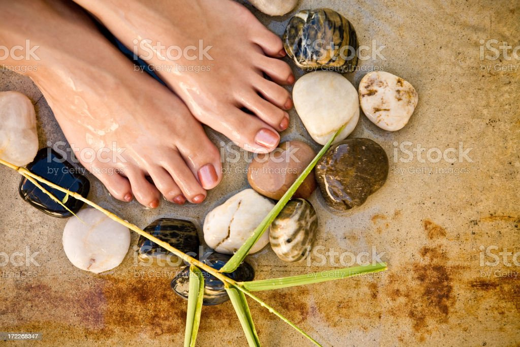 foot spa with stones and plant (no shower) royalty-free stock photo