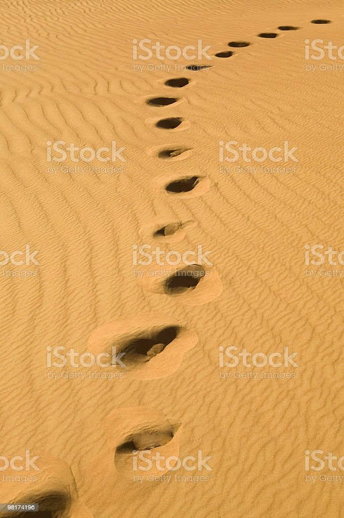 Foot steps in the desert royalty-free stock photo