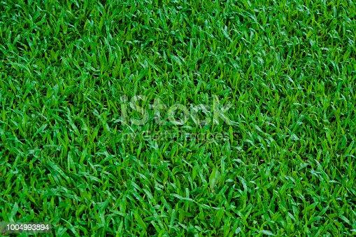 825397576 istock photo Football field green grass pattern texture background 1004993894