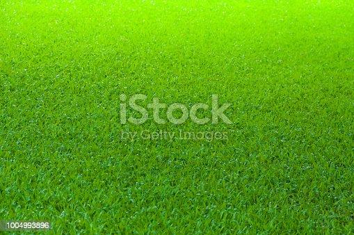 825397576 istock photo Football field green grass pattern texture background 1004993896