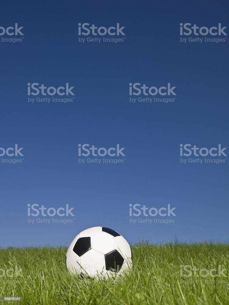 Football in the grass royalty-free stock photo