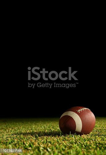 American Football on a grass field in the stadium lights.  Monday night football!