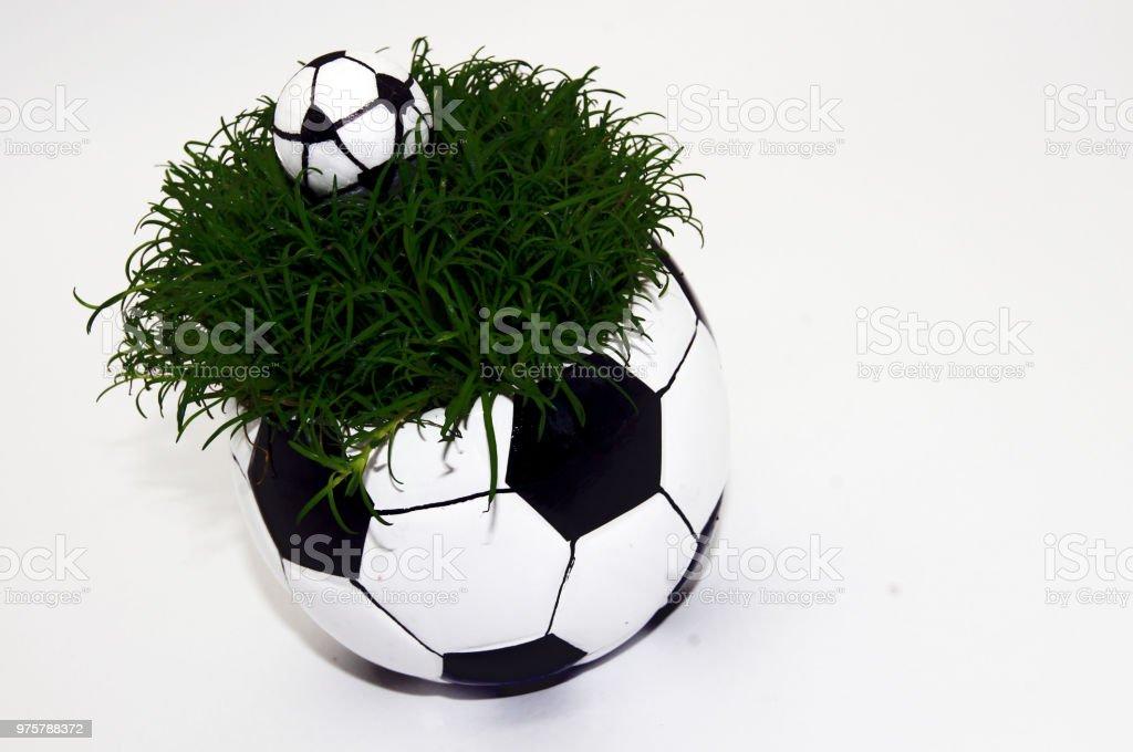 Fußball auf der grünen Wiese - Lizenzfrei Bildkomposition und Technik Stock-Foto