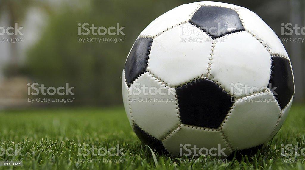 Fußball auf Rasen – Foto