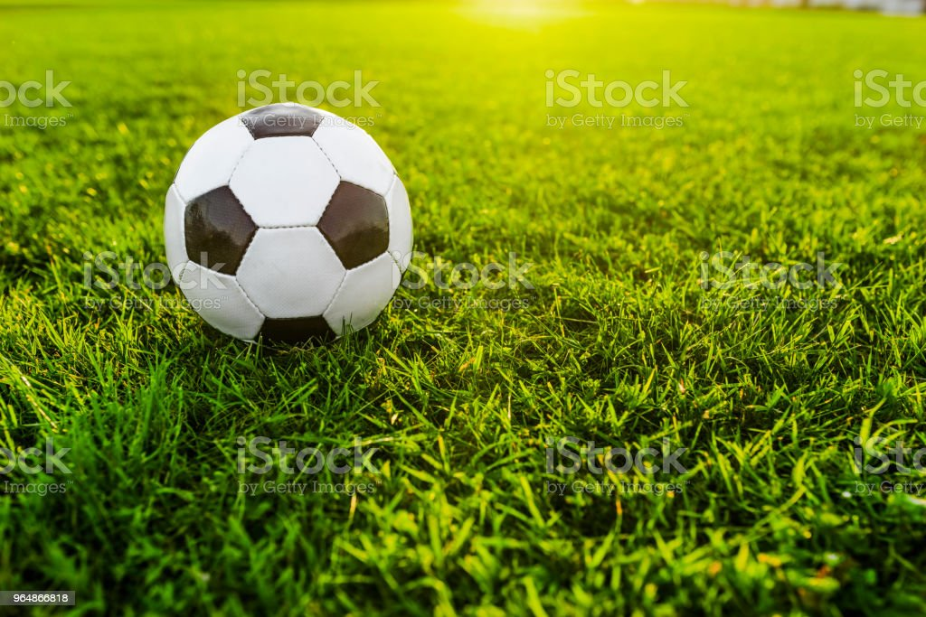 Football or soccer ball on green grass royalty-free stock photo
