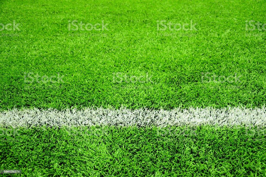 Football or Soccer Pitch photo libre de droits