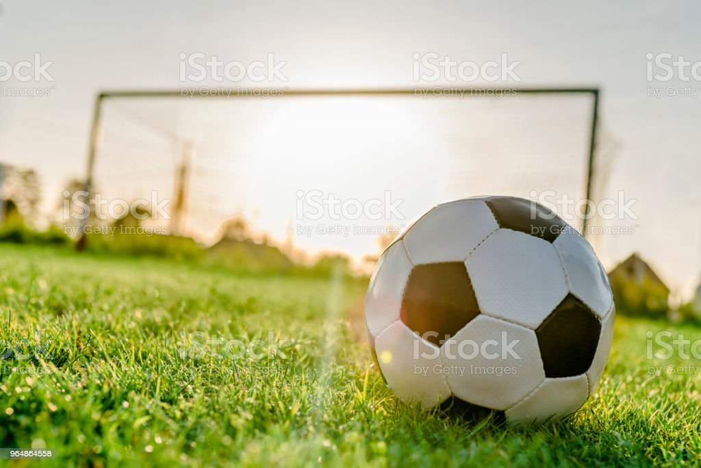 Football - Soccer Ball with Green Grass royalty-free stock photo