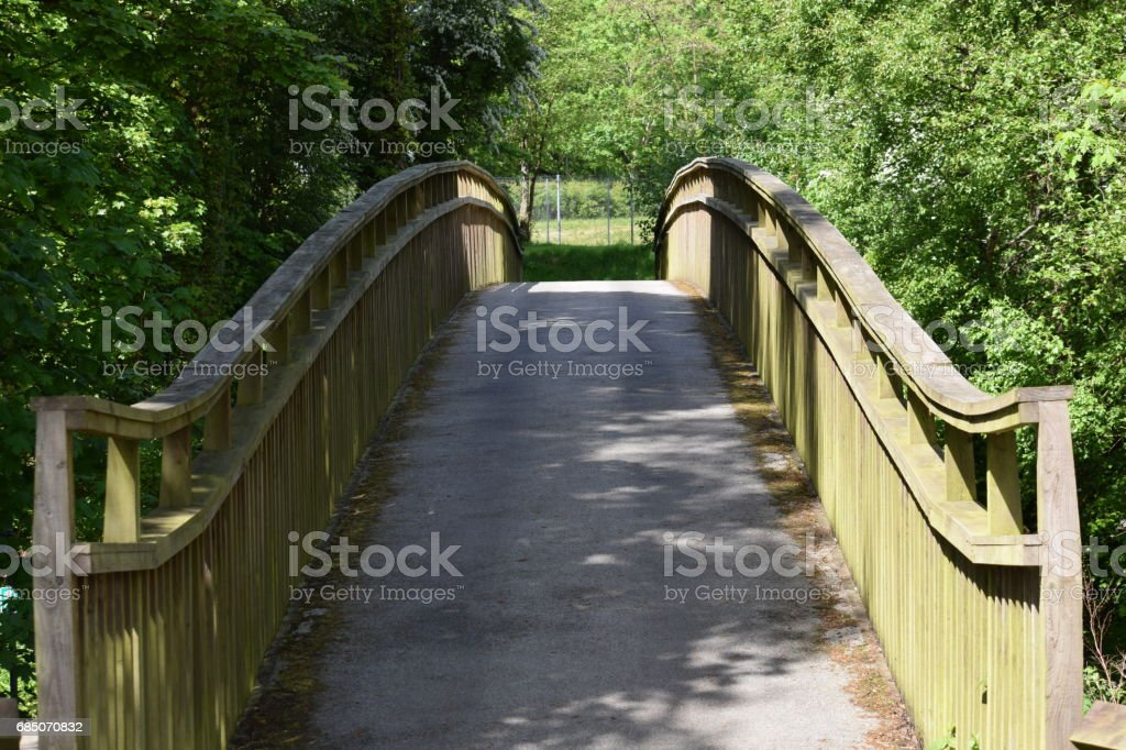 Footbridge between trees royalty-free stock photo