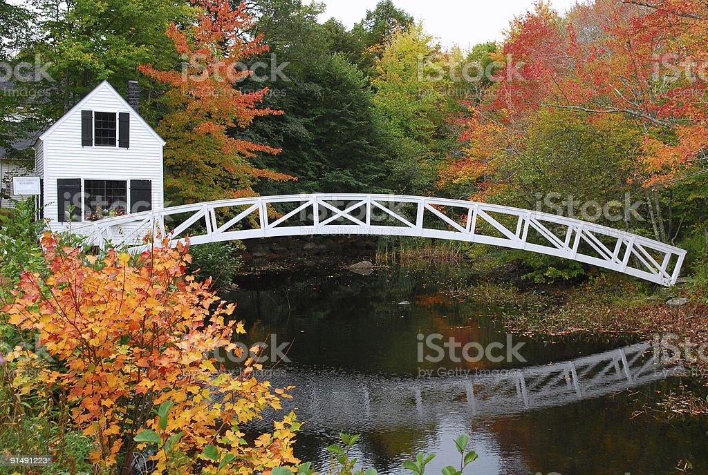 Footbridge in the Fall stock photo