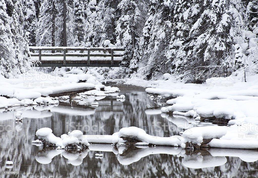 Footbridge in Winter royalty-free stock photo