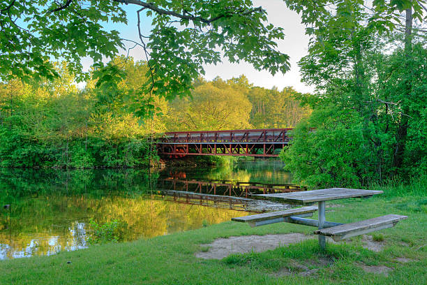 Footbridge over the Huron River, Ann Arbor Footbridge over the Huron River in Ann Arbor, Michigan. A great spot for a picnic ann arbor stock pictures, royalty-free photos & images