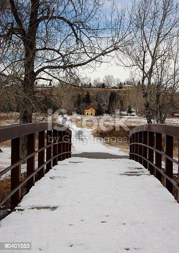 Pedestrian bridge in Fish Creek Park,Calgary,Alberta.