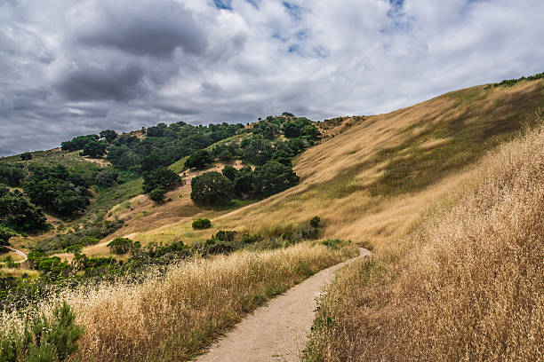 Foothill Trail in California stock photo