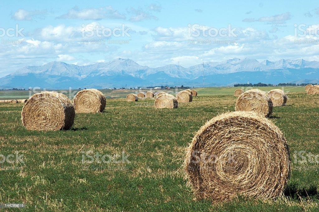 Foothills Hay Bales stock photo