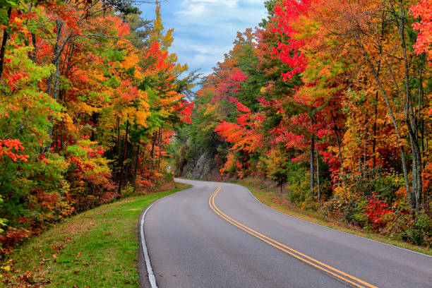 Foothills Parkway, Tennessee Autumn colors along the Foothills Parkway near Gatlinburg, Tennessee pigeon forge stock pictures, royalty-free photos & images