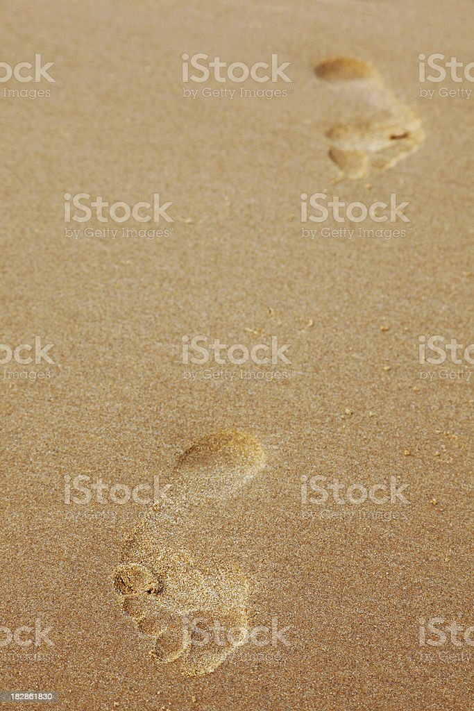 Foothpath on the Sand stock photo