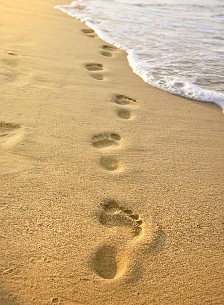 footmarks auf den sandstrand - fußspuren stock-fotos und bilder