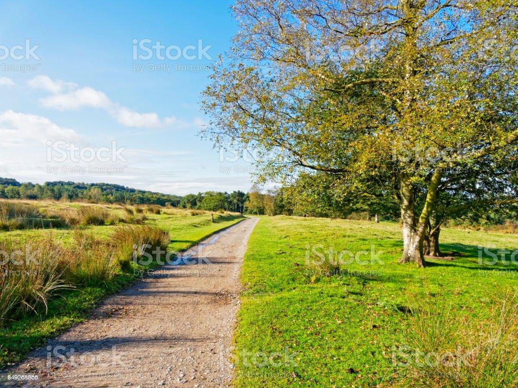 Footpath across a meadow stock photo